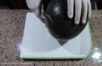 تزیین هندوانه به شکل دیس  - مخصوص شب یلدا