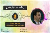 استاد احمد محمدی - مهتاب شبی